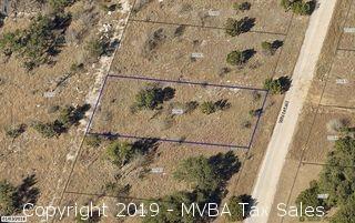 Account No. 20982 - Lot K1013, PLAT K1.1, Horseshoe Bay South, City of Horseshoe Bay, Burnet County, Texas ::::: Suit No. 46086 ::::: Approximate Property Address: White Tail, Horseshoe Bay, Texas