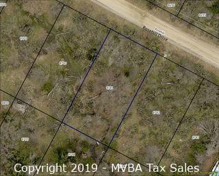 Account No. 8781 - Lot 387, Castle Hills Section, Sherwood Shores, City of Granite Shoals, Burnet County, Texas ::::: Suit No. 46064 ::::: Approximate Property Address: Rosehill