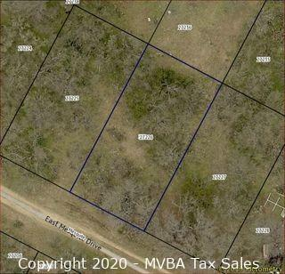 Account No. 27226 - Lot 423, Live Oak Section, Sherwood Shores, City of Granite Shoals, Burnet County, Texas ::::: Suit No. 46079 ::::: Approximate Property Address: Mesquite